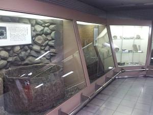Kyoto02a01
